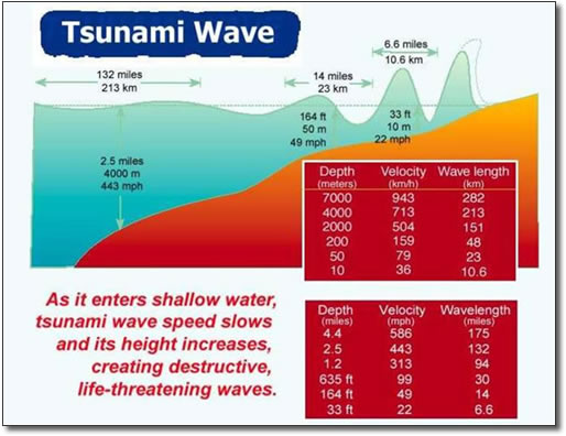 Tsunami | Shoaling process, shallow waters and energy ...