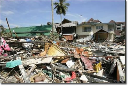Tsunami | Effects, large destruction of property and loss of